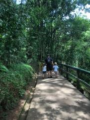 Brazilian walk ways
