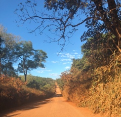The dry dirt road to adventure