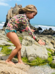 Olivia shell hunting